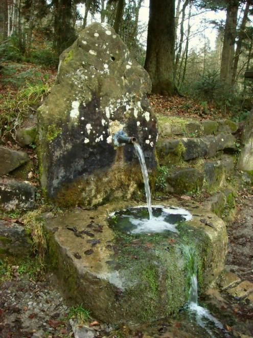 Fratzenbrunnen im Trauzenbachtal (Foto © R. Wolf)