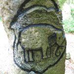 """""""Hübscher Stein"""" im kleinen Lautertal mit Helfensteinschen Elefanten, Foto: R. Wolf"""